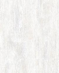 Priscilla Grey Faux Wood Wallpaper by  Brewster Wallcovering