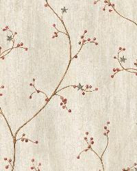 Felicia Grey Star Berry Vine Wallpaper by  Brewster Wallcovering