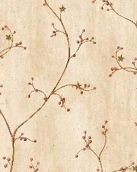 Felicia Sand Star Berry Vine Wallpaper by  Brewster Wallcovering