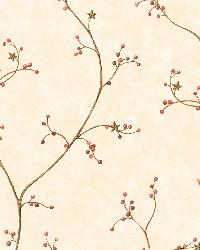Felicia Rose Star Berry Vine Wallpaper by  Brewster Wallcovering