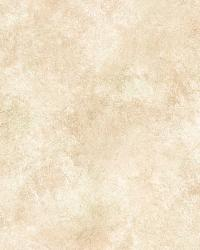 Willow Ale Faux Parchment Texture Wallpaper by  Brewster Wallcovering