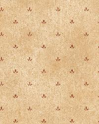 Butters Sand Paw Print Toss Wallpaper by  Brewster Wallcovering