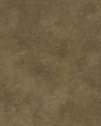Brown Evan Texture by  Brewster Wallcovering