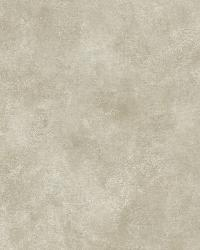 Grey Evan Texture by  Brewster Wallcovering