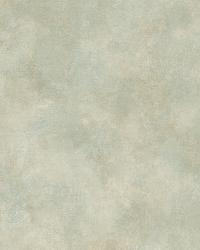 Beige Evan Texture by  Brewster Wallcovering