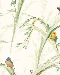 White Meadow Lark by  Brewster Wallcovering