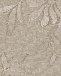 Cream Jasmine by  Brewster Wallcovering
