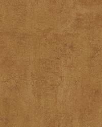 Coffee Safari Texture by  Brewster Wallcovering