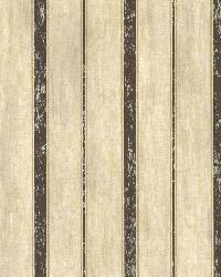 Saco Espresso Parker Stripe by  Brewster Wallcovering