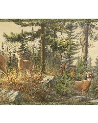 Ashmere Green Whitetail Crest Border by