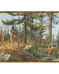 Ashmere Brown Whitetail Crest Border by