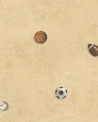MVP Sand Sports Balls Toss Wallpaper by