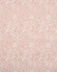 B8220 CORAL by