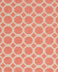 B8249 CORAL by