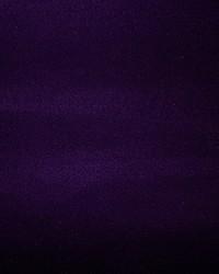 Break A Leg Purple by