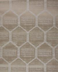 Hexagon Birch by