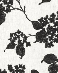 Ralph Lauren Apsley House Embroid Etching Fabric
